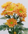 Reagan dark orange spray chrysanthemum